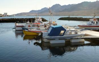Stór Reyðarfjarðarsvæðið í fjárhagsvanda