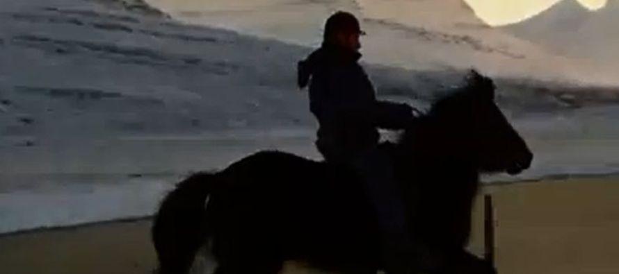 Brúnó frá Voðmúlastöðum