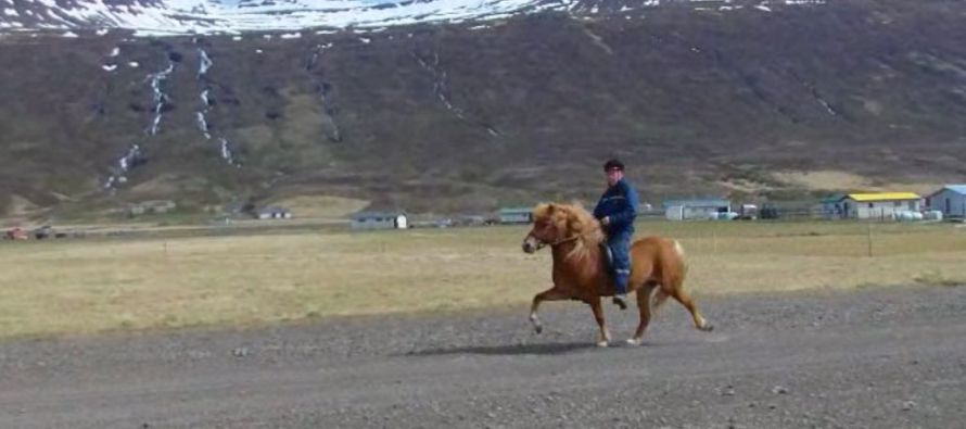 Hundasvæði á Fáskrúðsfirði