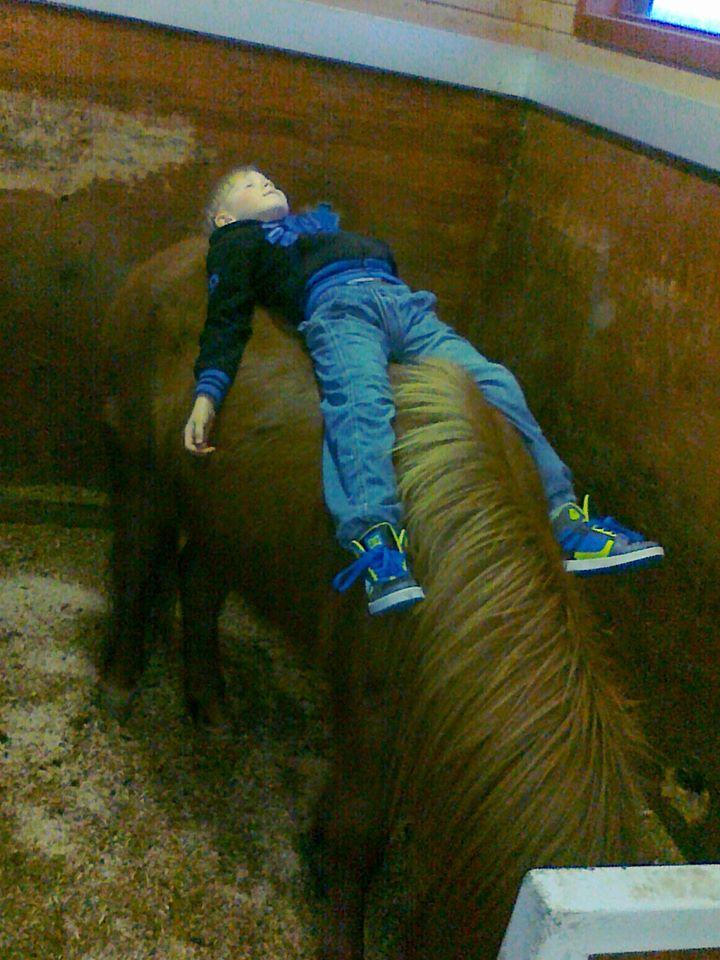 upprennandi hestamaður