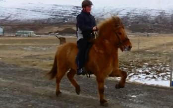Hestamenn nýta góða veðrið
