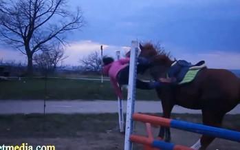 Skemmtilegt myndband af hestum