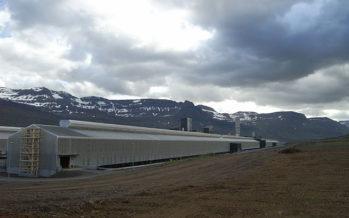Er álið málið? – Af hverju er álið ekki fullunnið á Íslandi?